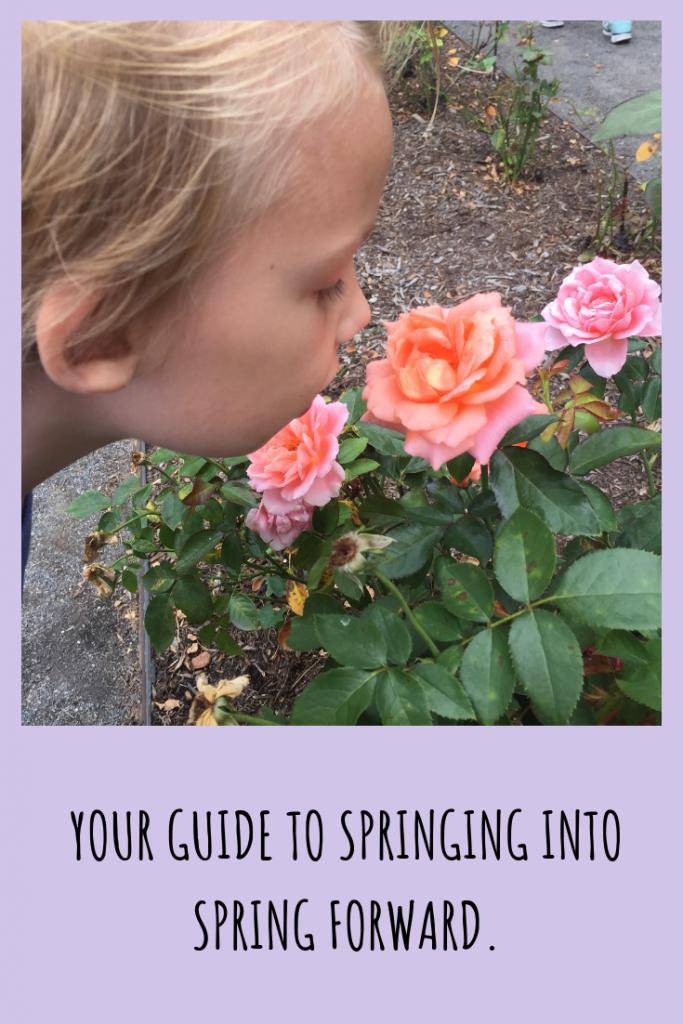Spring Forward Guide